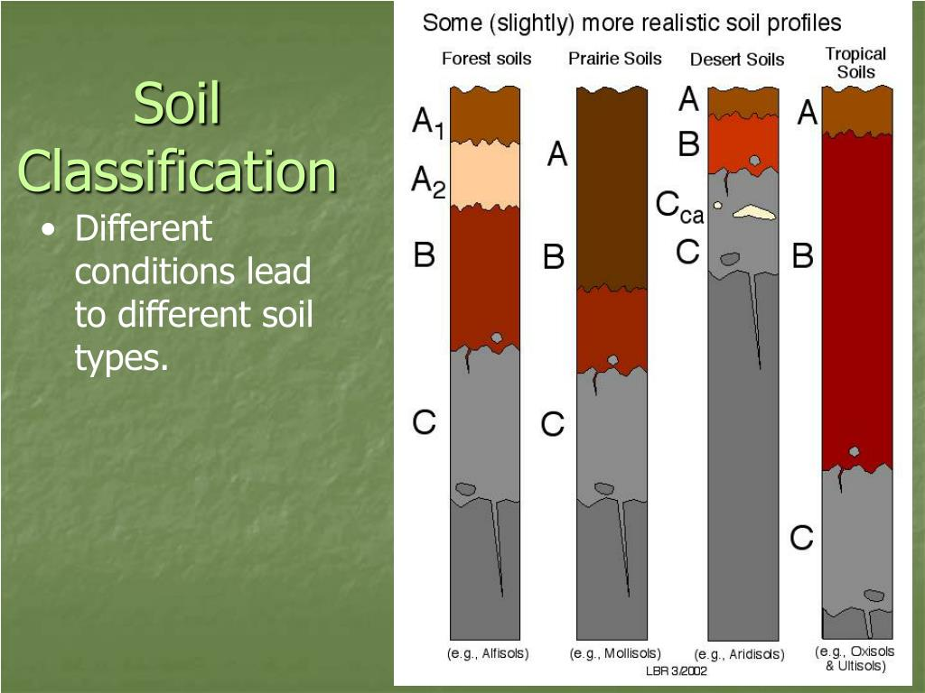 Ppt soils powerpoint presentation id 522039 for Soil classification