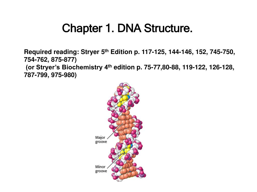 Chapter 1. DNA Structure.