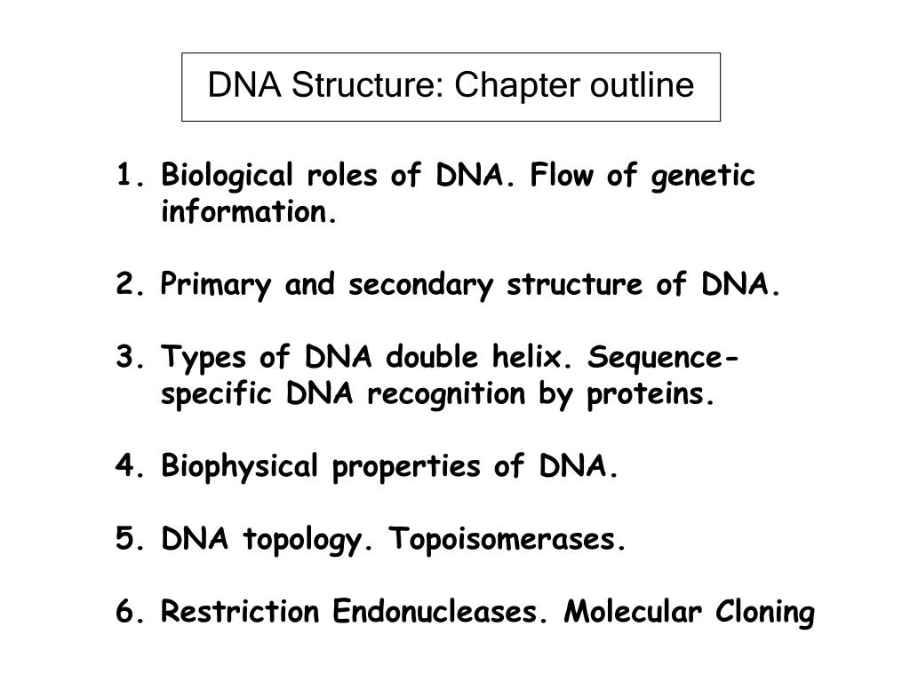 DNA Structure: Chapter outline