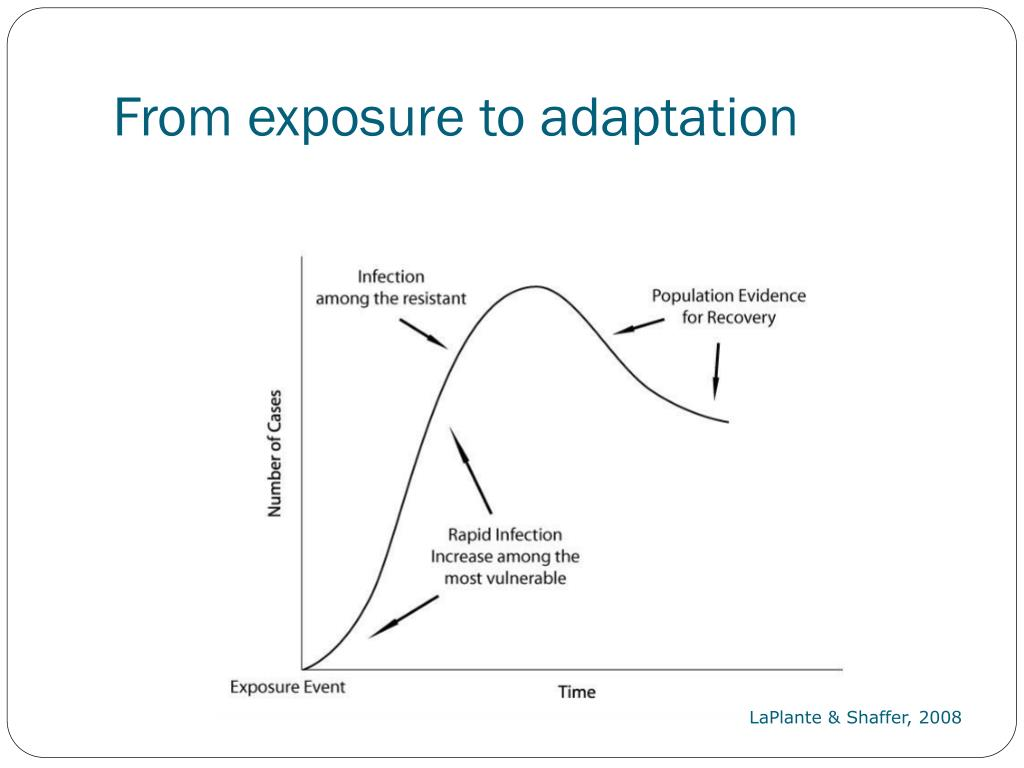 From exposure to adaptation