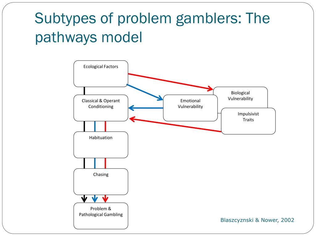Subtypes of problem gamblers: The pathways model