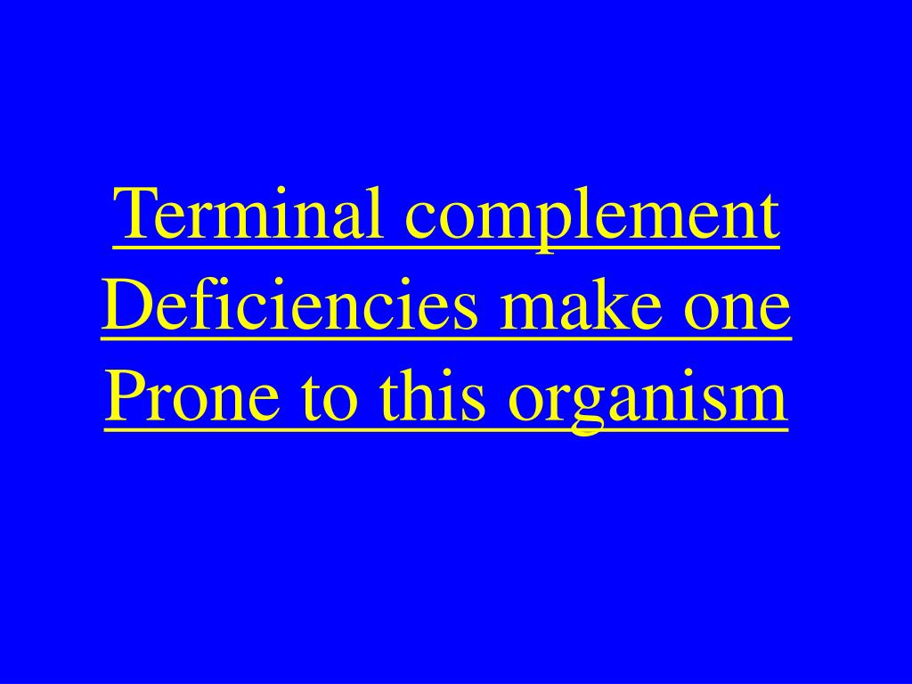 Terminal complement