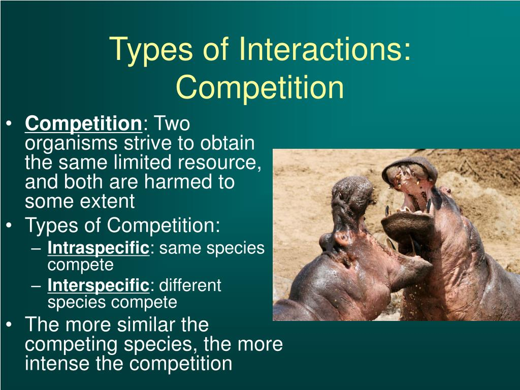 when different kinds of organisms interact Individual organisms live together in an ecosystem and depend on one another  in fact, they have many different types of interactions with each other, and many.