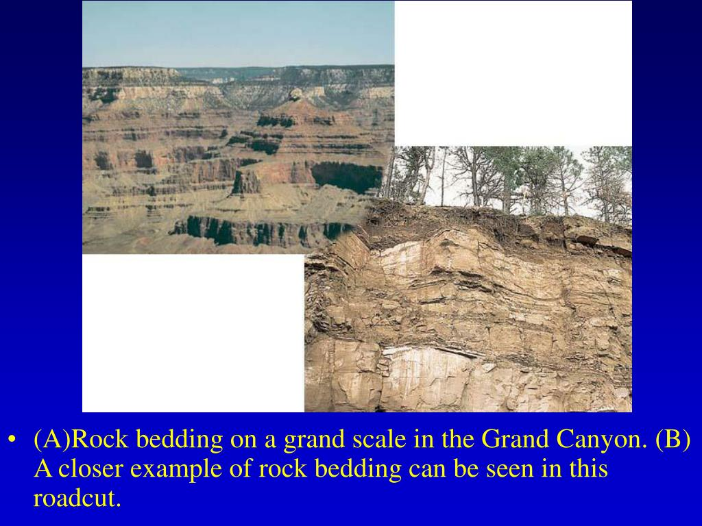 (A)Rock bedding on a grand scale in the Grand Canyon. (B) A closer example of rock bedding can be seen in this roadcut.