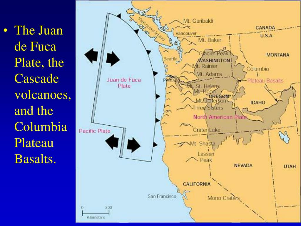 The Juan de Fuca Plate, the Cascade volcanoes, and the Columbia Plateau Basalts.