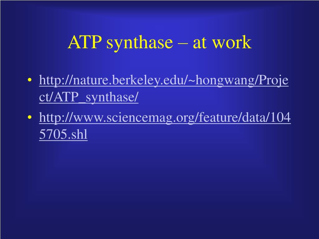 ATP synthase – at work