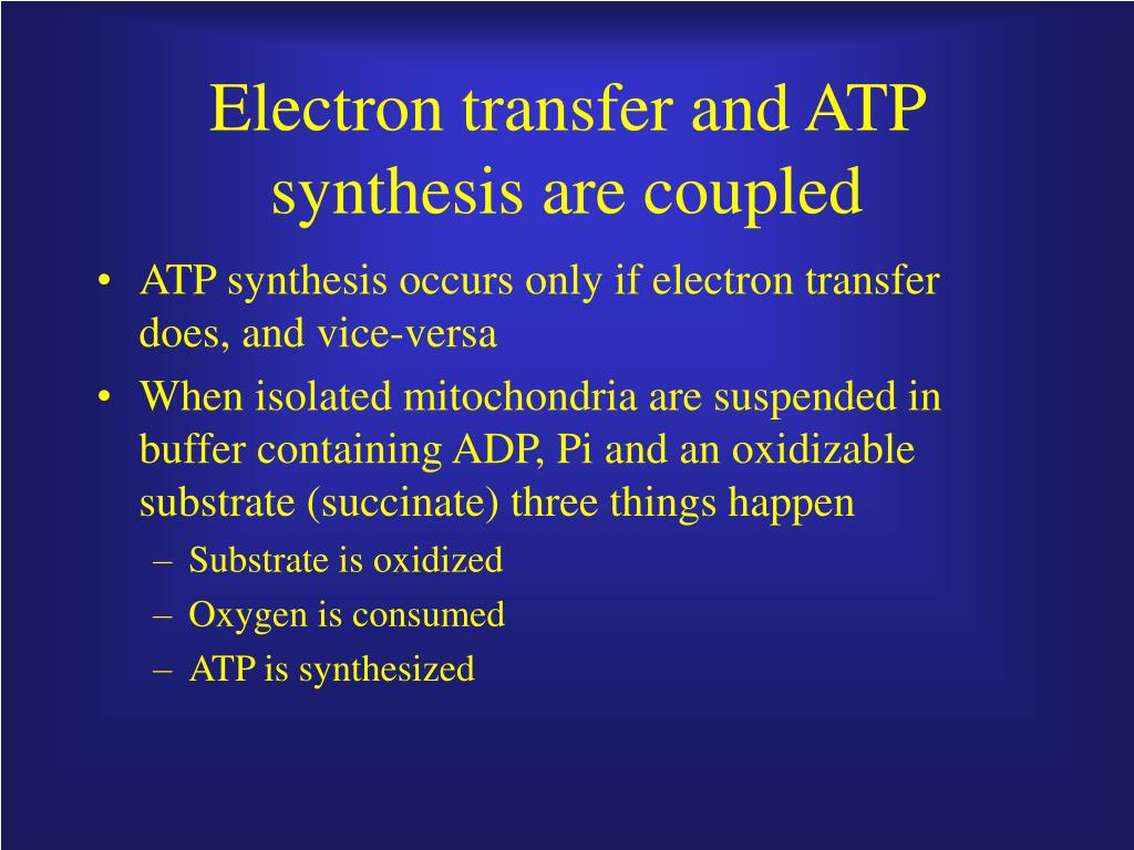 Electron transfer and ATP synthesis are coupled