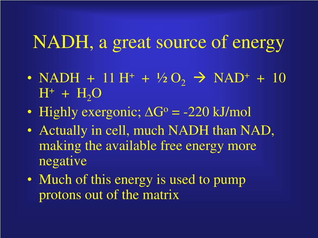 NADH, a great source of energy