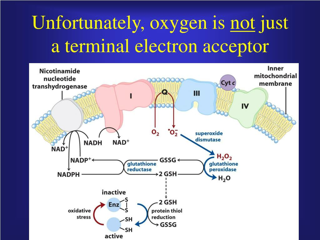 Unfortunately, oxygen is