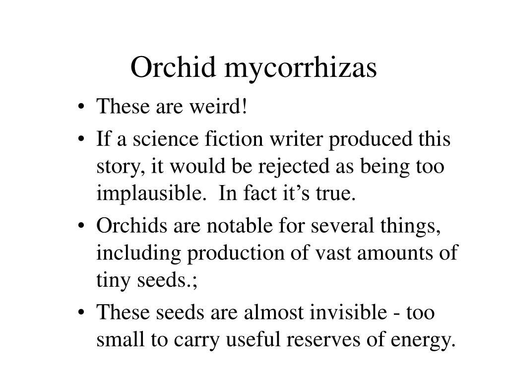 Orchid mycorrhizas