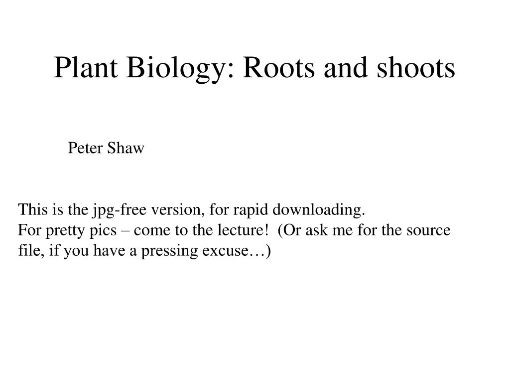 Plant Biology: Roots and shoots