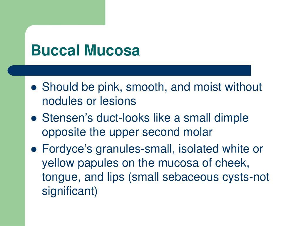 Buccal mucosa