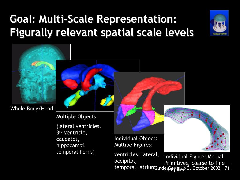 Goal: Multi-Scale Representation: Figurally relevant spatial scale levels