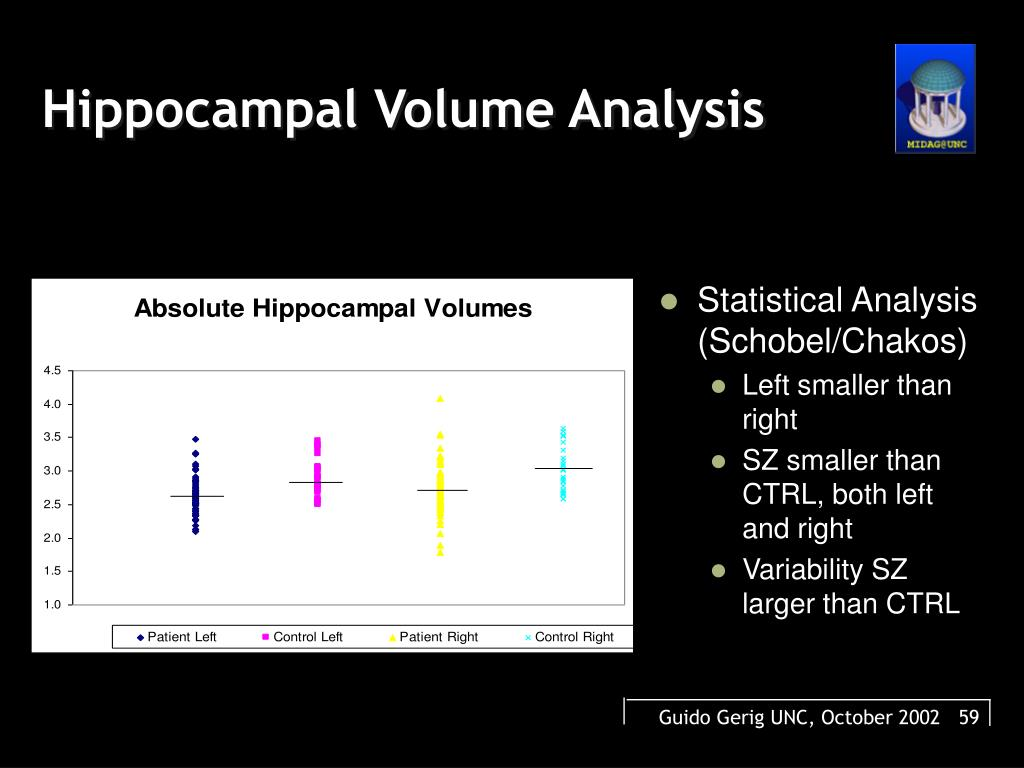 Hippocampal Volume Analysis