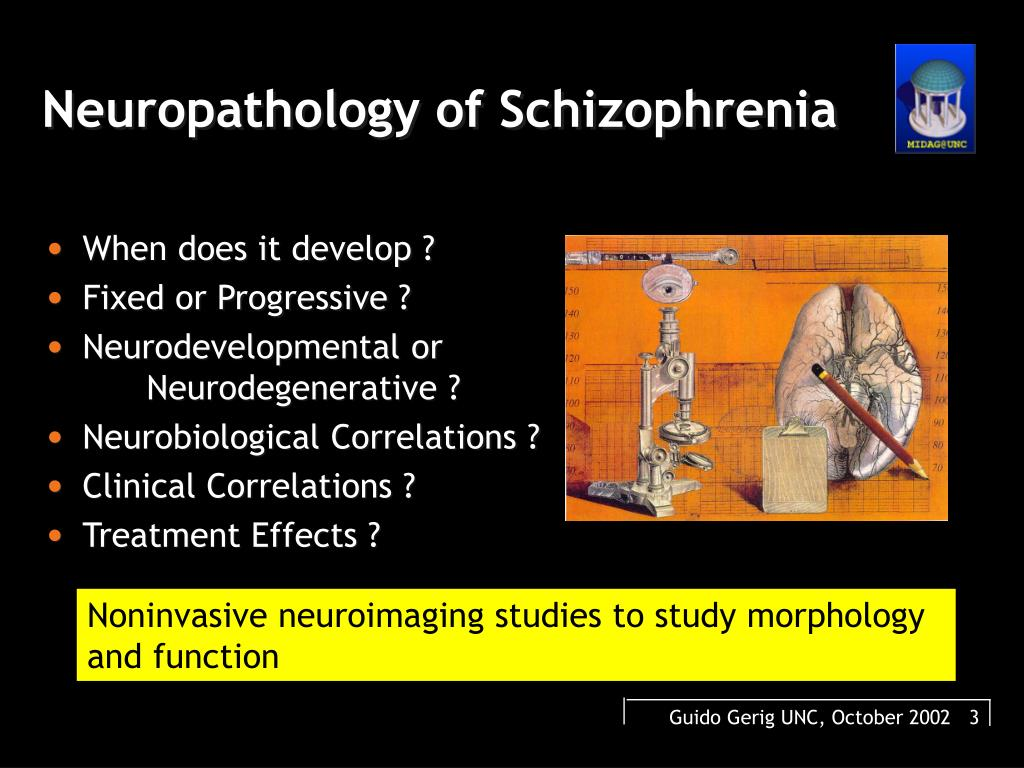 Neuropathology of Schizophrenia