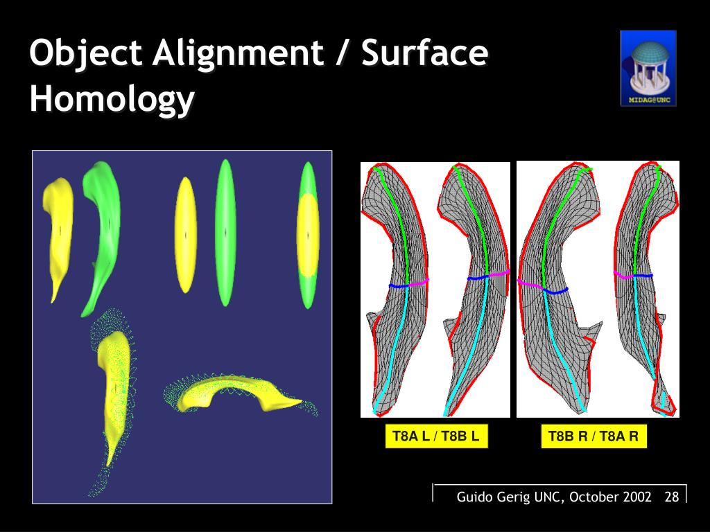 Object Alignment / Surface Homology