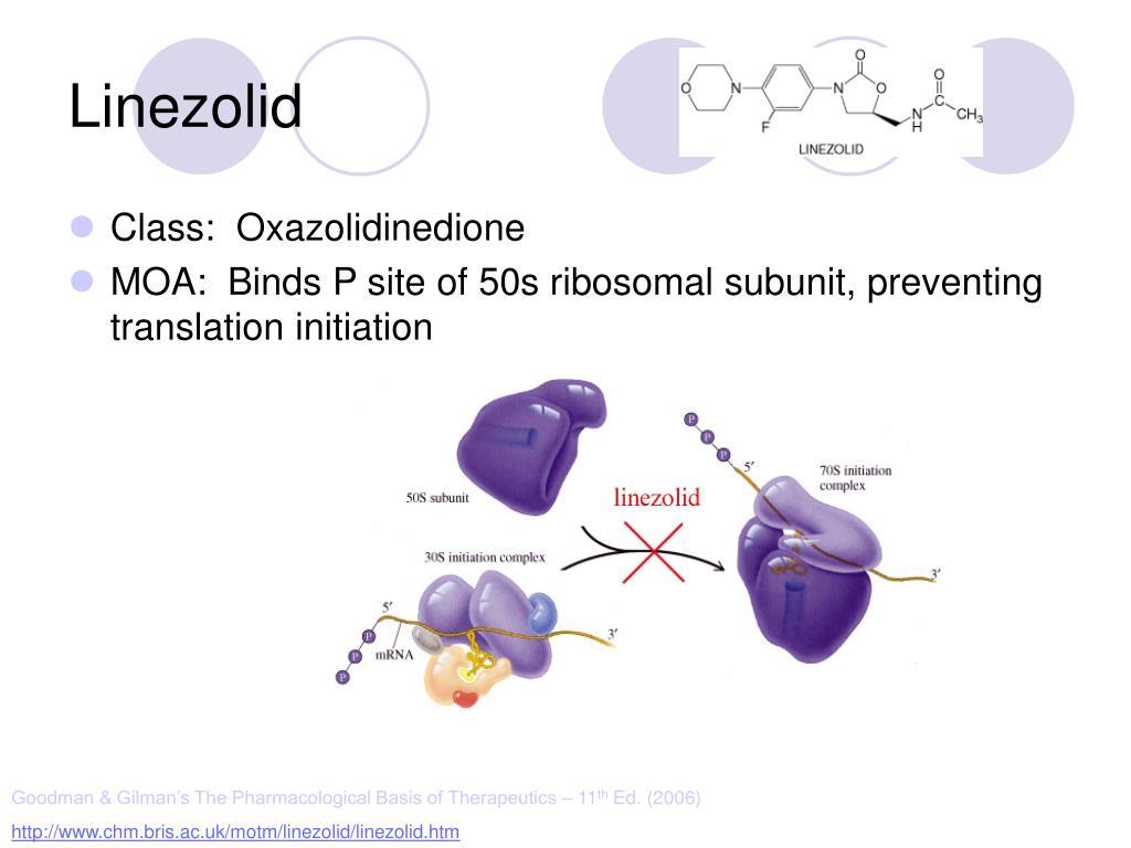 PPT - Vancomycin PowerPoint Presentation - ID:523486