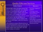 quality efficient services