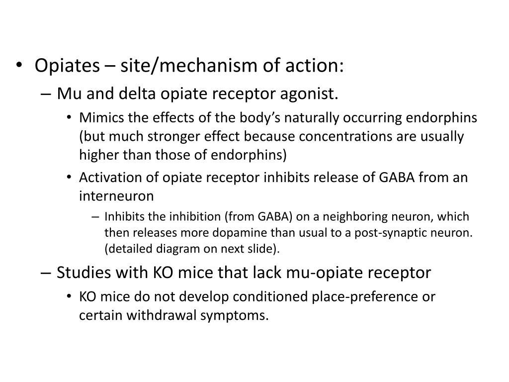 Opiates – site/mechanism of action: