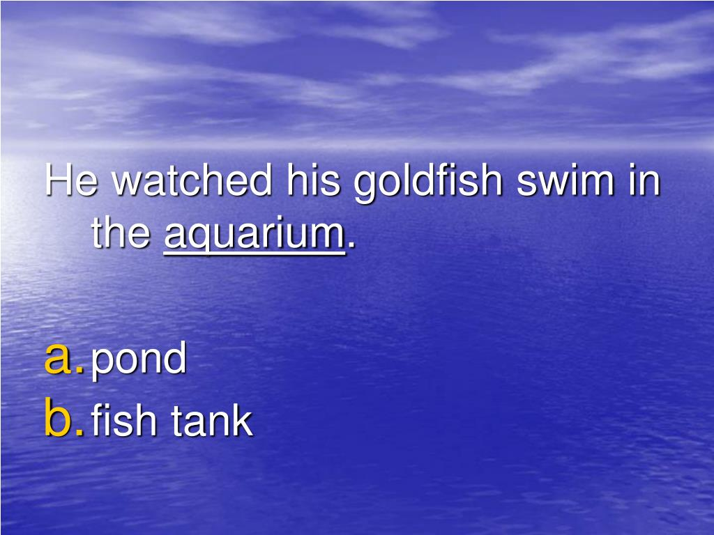 He watched his goldfish swim in the