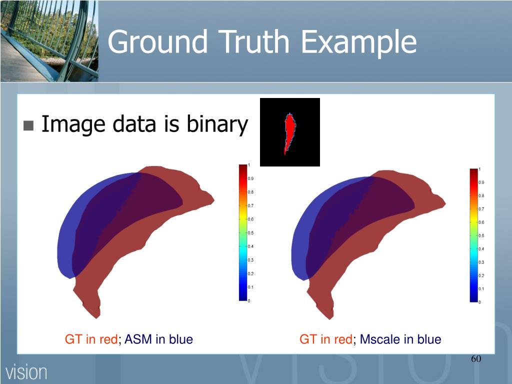 Ground Truth Example