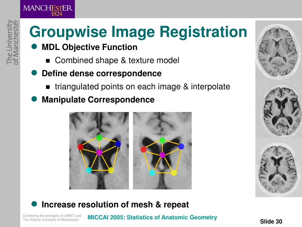 Groupwise Image Registration