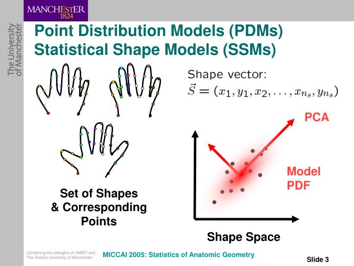 Point distribution models pdms statistical shape models ssms