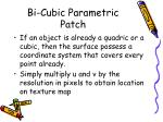 bi cubic parametric patch