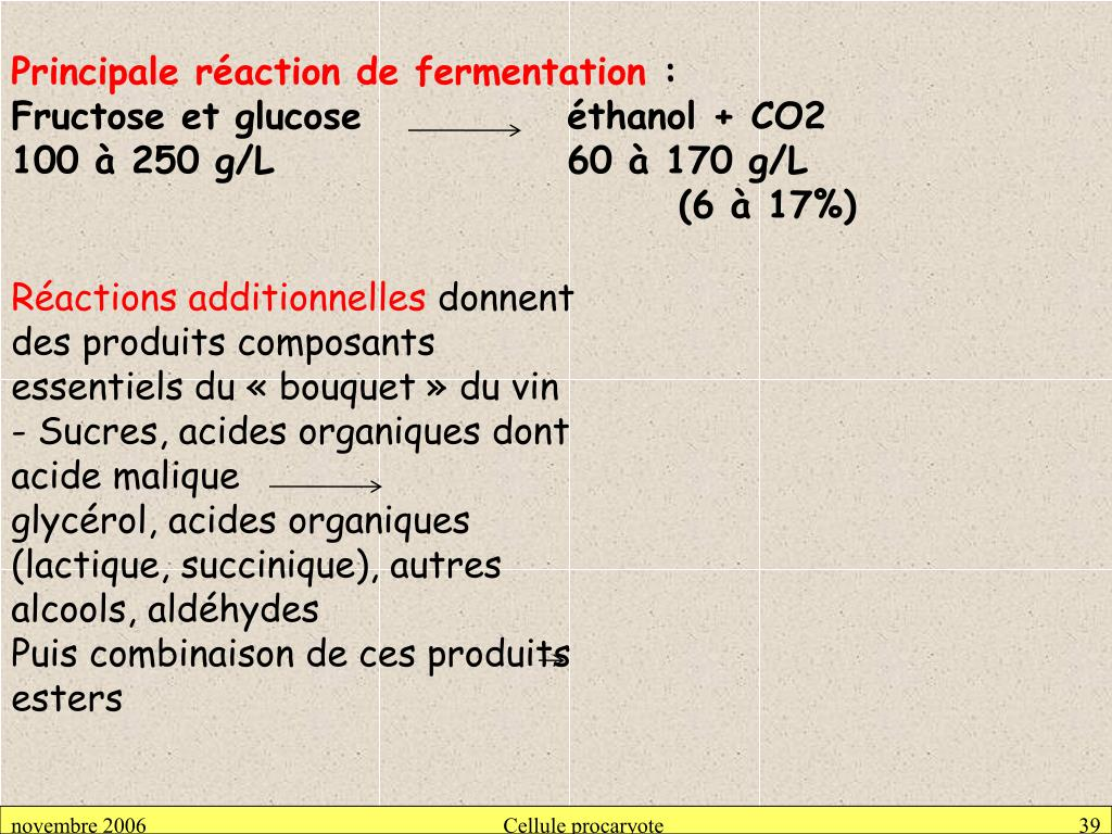 Principale réaction de fermentation