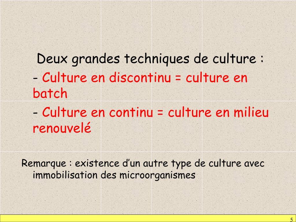 Deux grandes techniques de culture :
