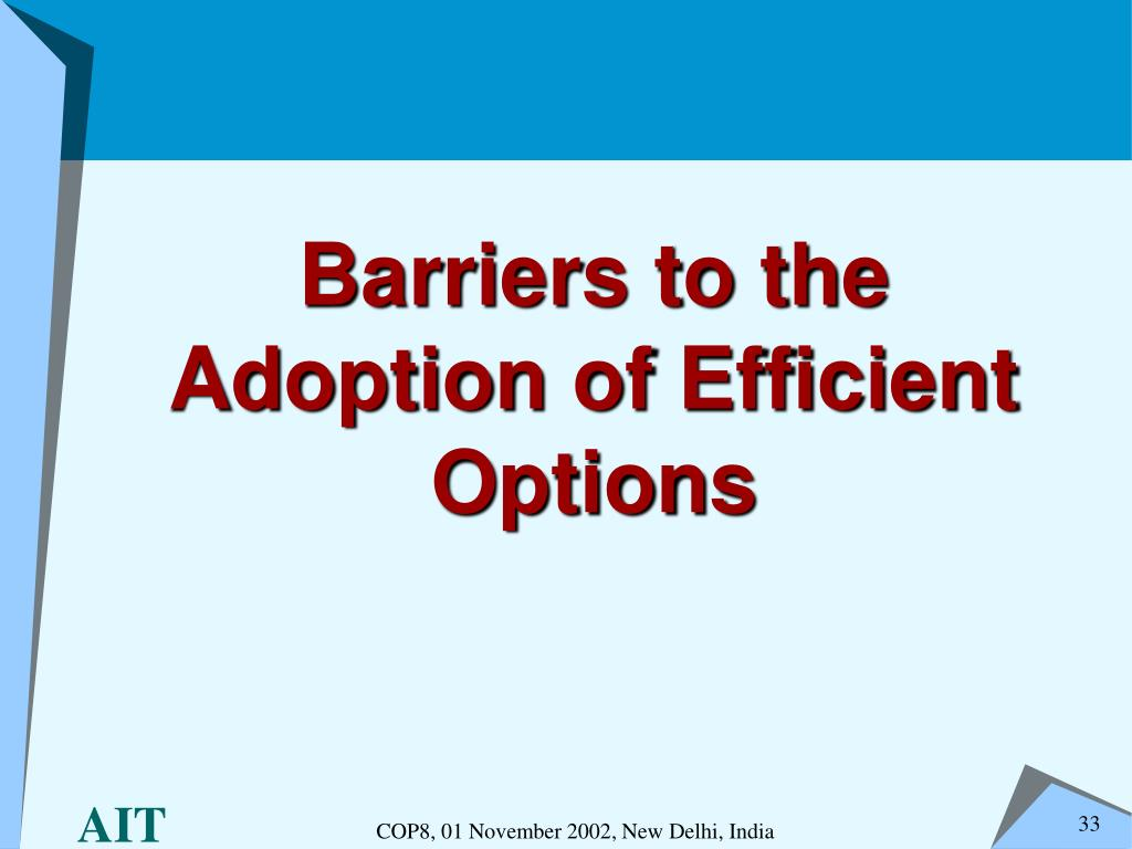 Barriers to the Adoption of Efficient Options