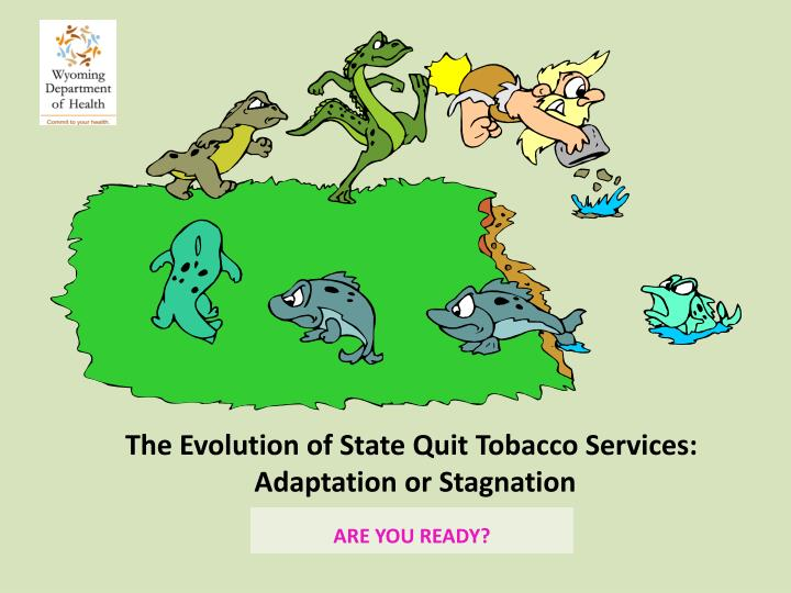 The evolution of state quit tobacco services adaptation or stagnation