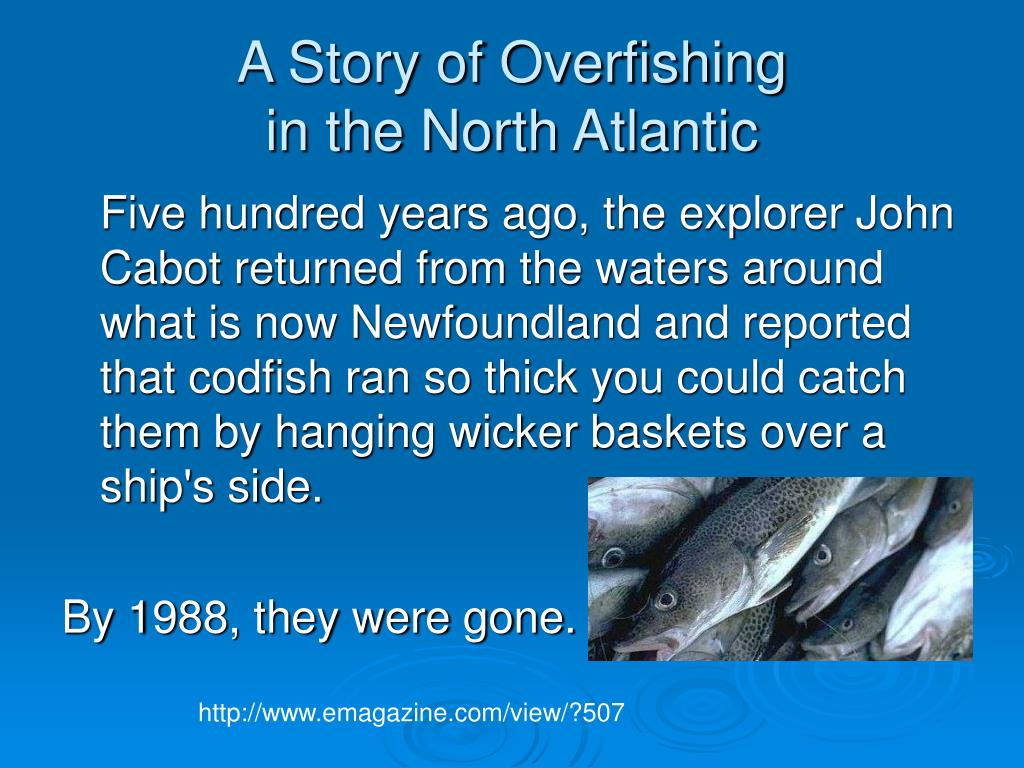 A Story of Overfishing