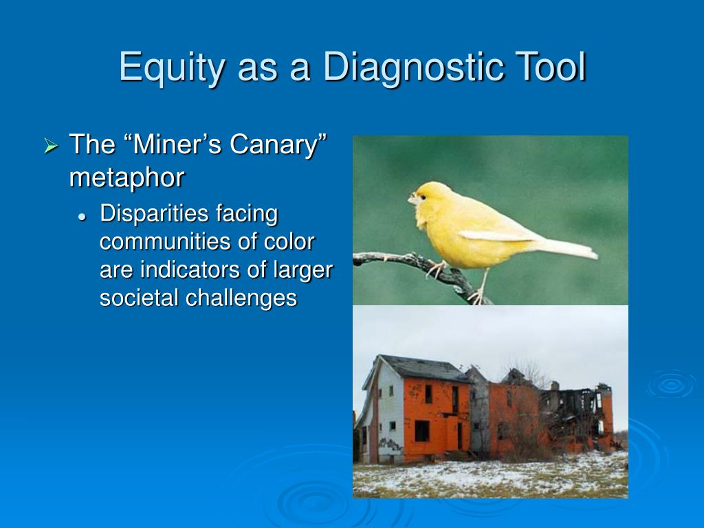 Equity as a Diagnostic Tool