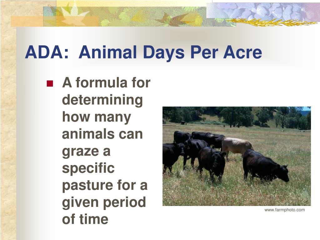 ADA:  Animal Days Per Acre