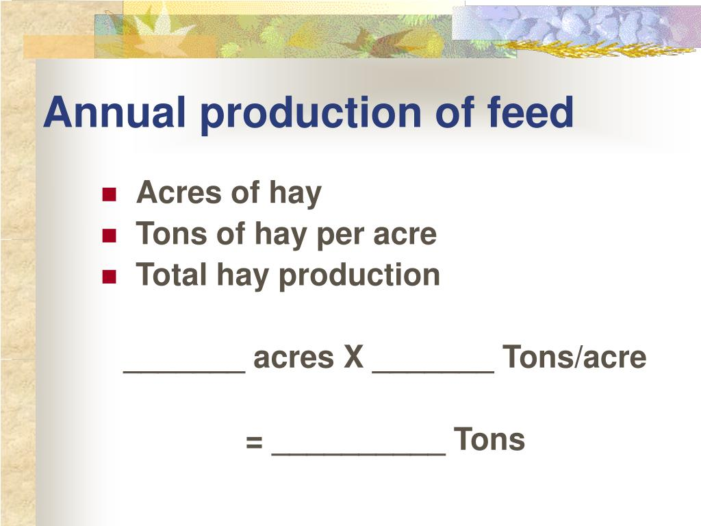 Annual production of feed
