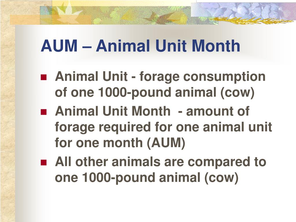 AUM – Animal Unit Month