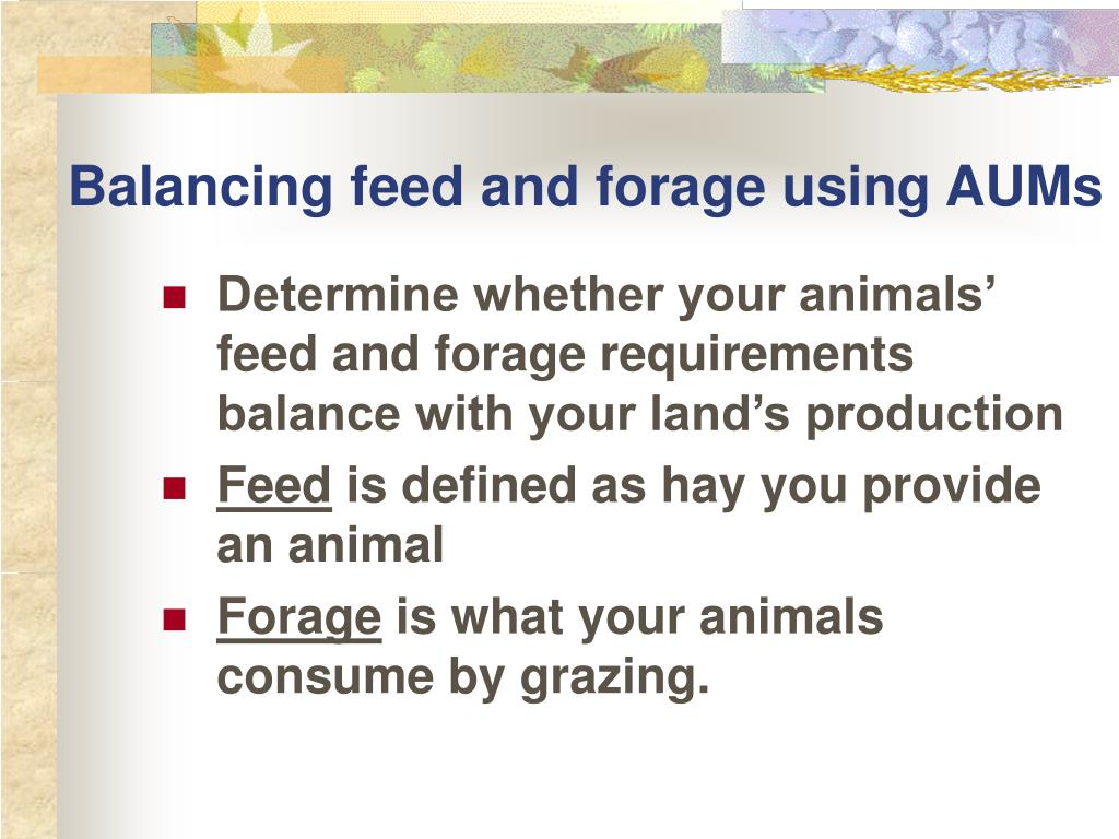 Balancing feed and forage using AUMs