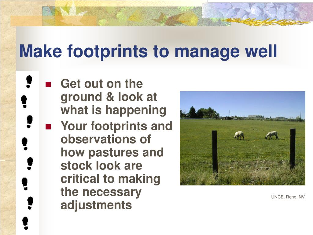 Make footprints to manage well
