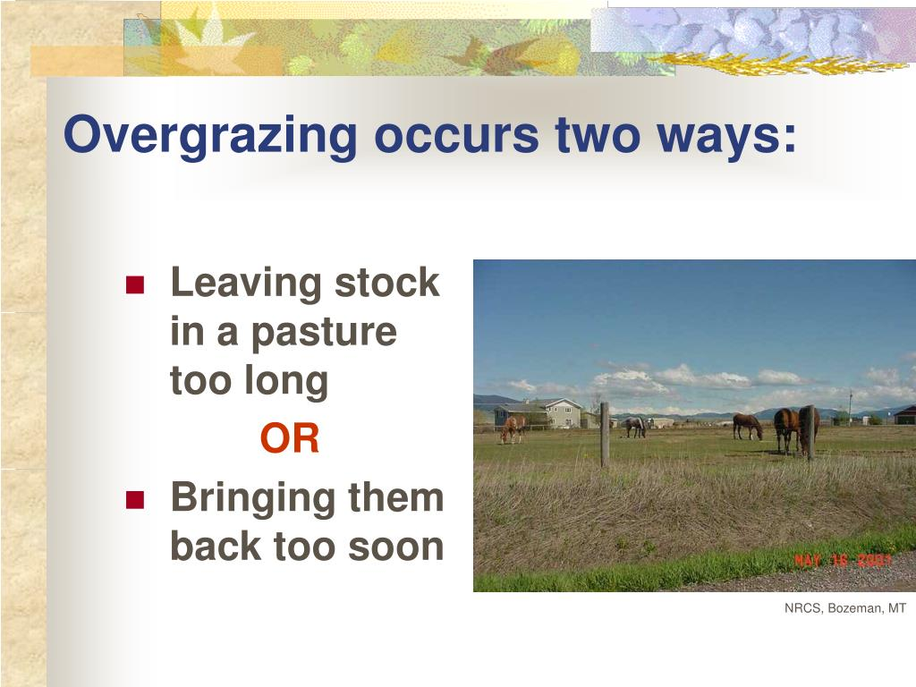 Overgrazing occurs two ways: