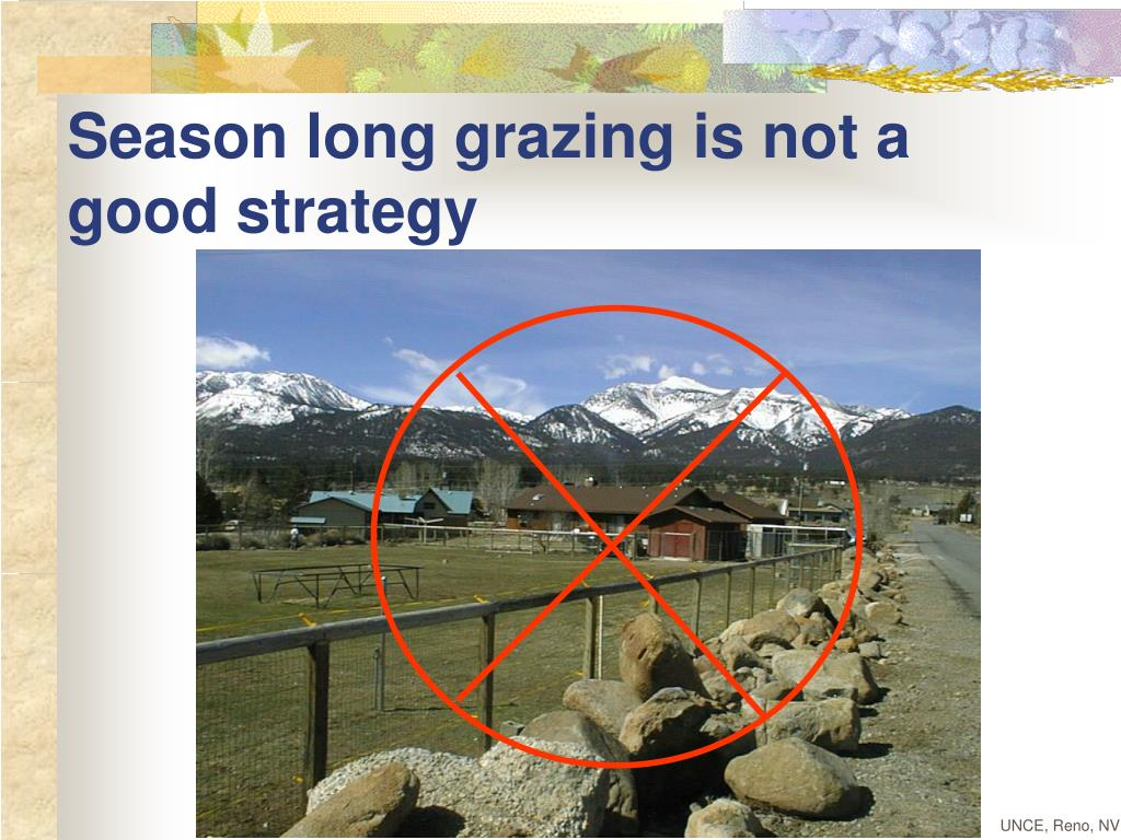 Season long grazing is not a good strategy