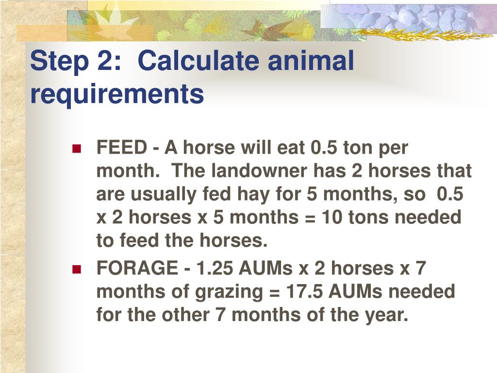 Step 2:  Calculate animal requirements