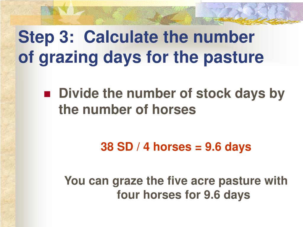 Step 3:  Calculate the number of grazing days for the pasture