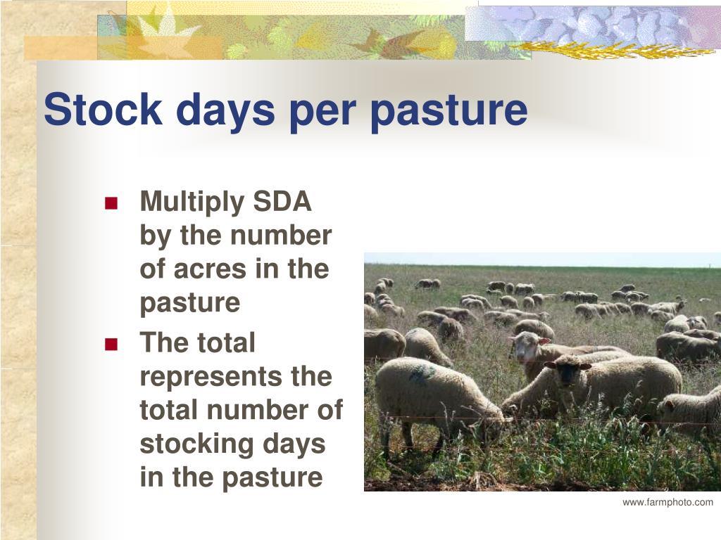 Stock days per pasture