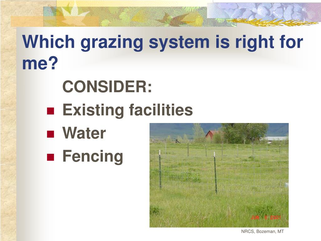 Which grazing system is right for me?
