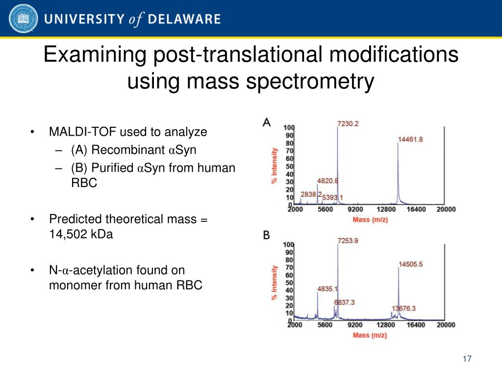 Examining post-translational modifications using mass spectrometry