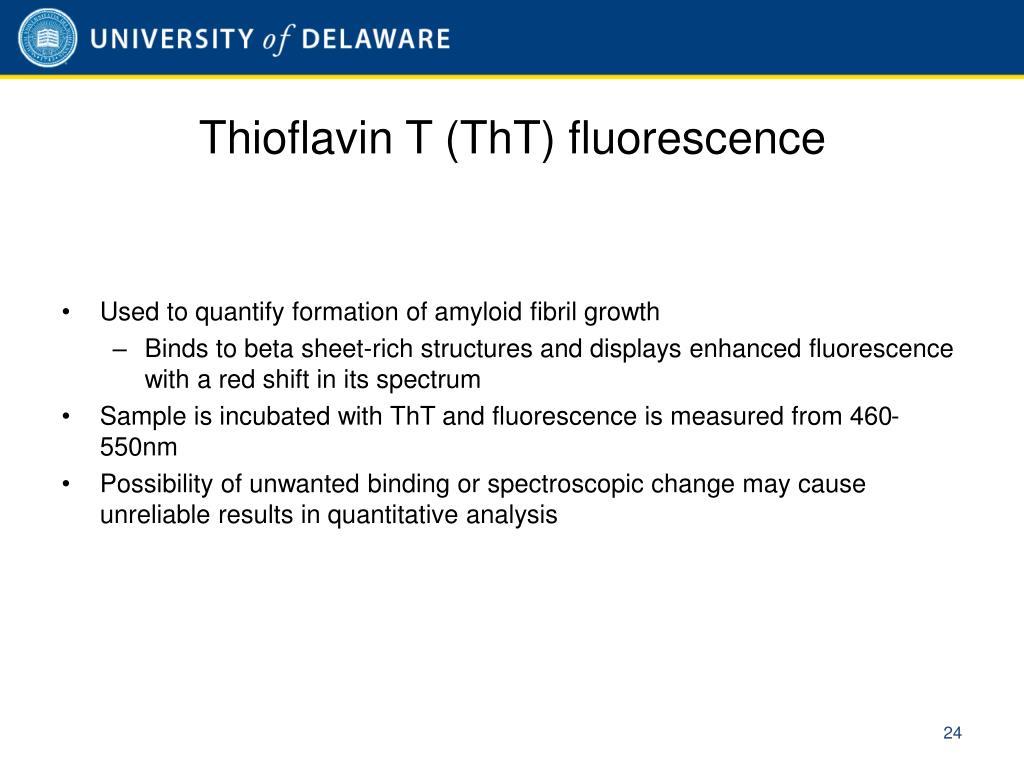 Thioflavin T (ThT) fluorescence