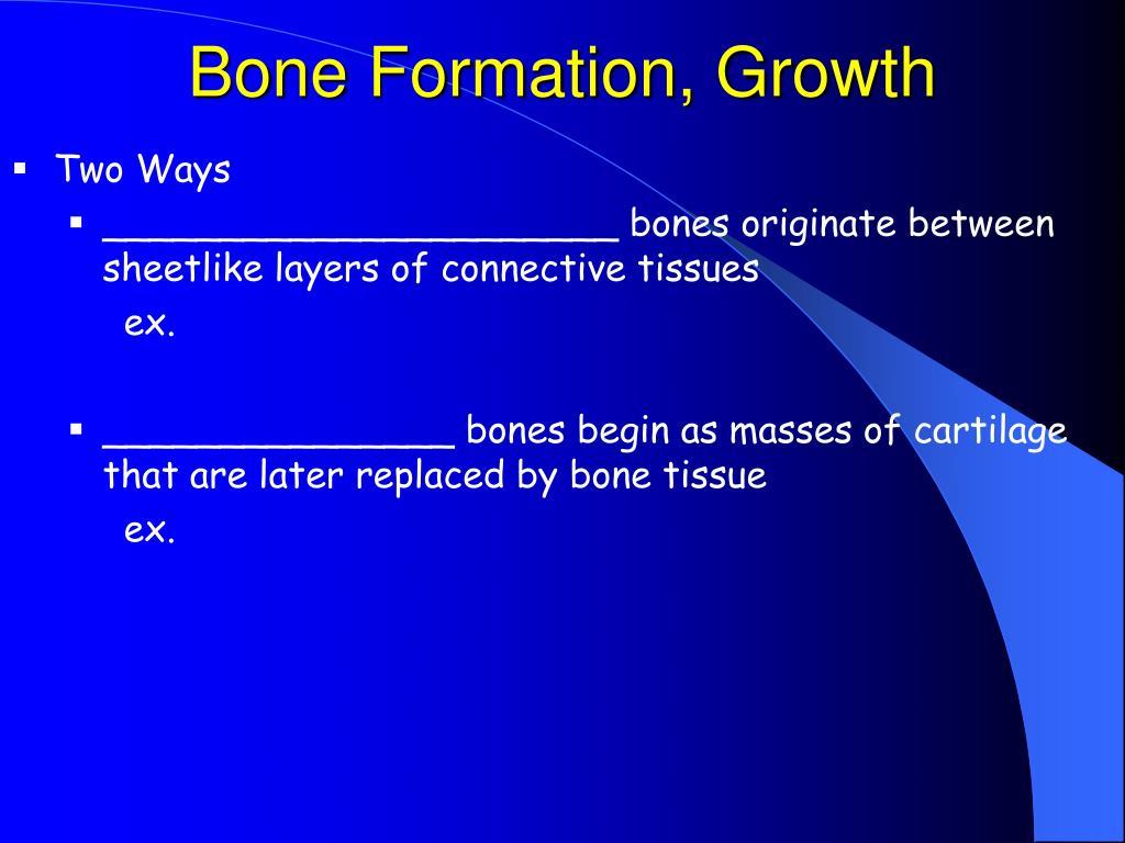 Bone Formation, Growth