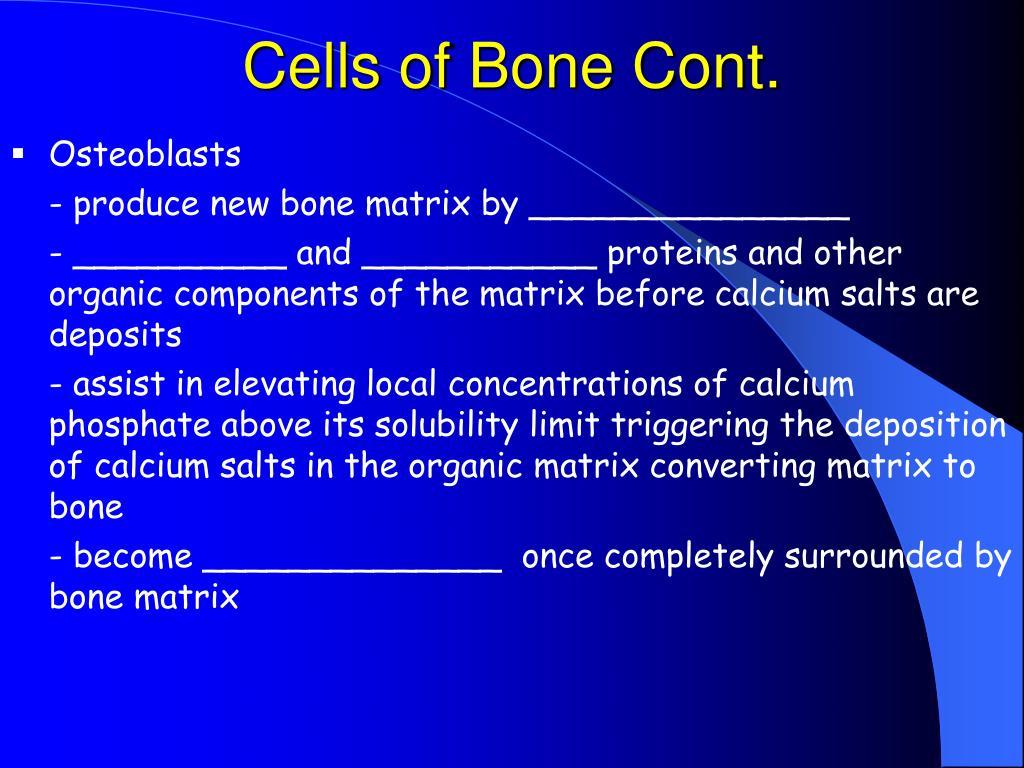 Cells of Bone Cont.