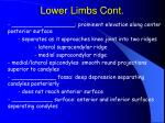 lower limbs cont